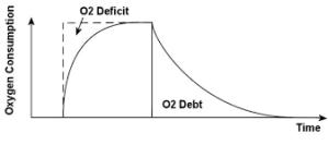 o2 debt